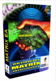 Matrix Artificial Intelligence Expert Advisor der Firma Deltafins Ltd. im Test - Bild 1.