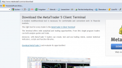 Metatrader 5 Download und Installationsanleitung - Bild 1.